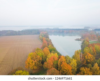 Aerial view of lake between colourful autumn trees