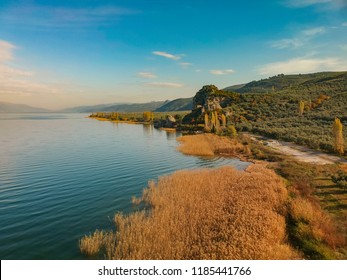 Aerial view from Lake Iznik with reeds in Turkey during autumn