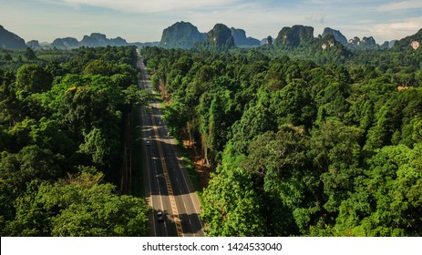 aerial view landscape of Tree or forest and road , Krabi Thailand .