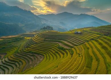 Aerial view laocai Vietnam Vietnam Paddy fields, Sapa, Vietnam