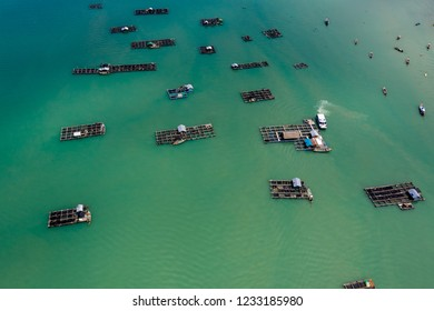 Aerial view of large scale traditional floating fish farms on Koh Yao Noi island, Thailand