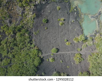 Aerial view of lava fields on Rangitoto, near Auckland, New Zealand