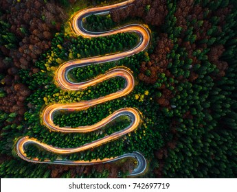 Aerial view of light trails on a winding road through the forest at night