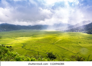 Aerial View of Lingko Spider Web Rice Fields While Sunlight Piercing Through Clouds to the Field with Raining. Flores, East Nusa Tenggara, Indonesia