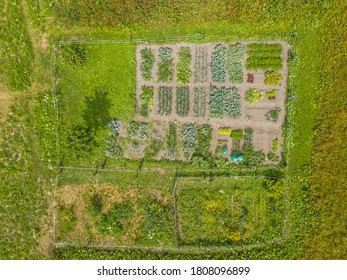 Aerial view of little garden with vegetables for homemade growing.
