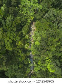 Aerial view of little rock pools and falls in a jungle in Queensland, Australia