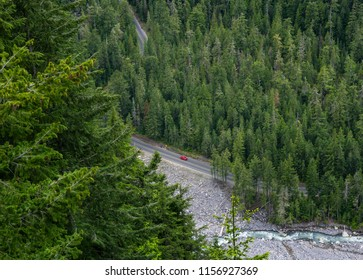 Aerial view of lone red car driving through a pine conifers forest in Mount Rainier National Park, Washington state, USA.