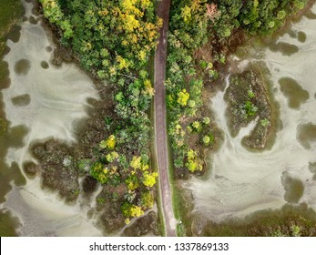 Aerial view of a lone road weaving through Hilton Head Island national reserve and the surrounding marshes.