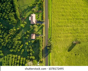 Aerial view - looking down at green grass and countryside houses at sunset