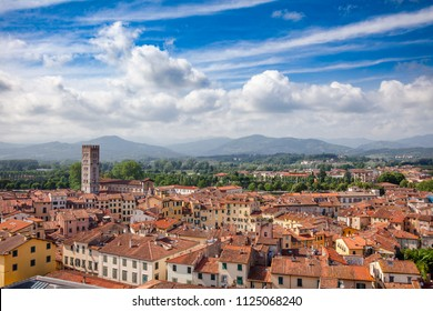 Aerial view of Lucca old town with mediterranean terracotta roof buildings on narrow streets, Tuscany, Italy