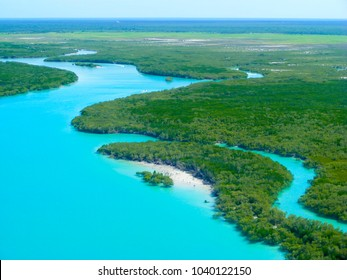 Aerial view of the mangroves lining the tidal flat inlets around  Broome, North Western Australia with the aquamarine Indian Ocean in  view.