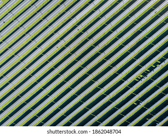 Aerial view of many panels of solar cells in a row on the top view to creat new clear energy. Future is here