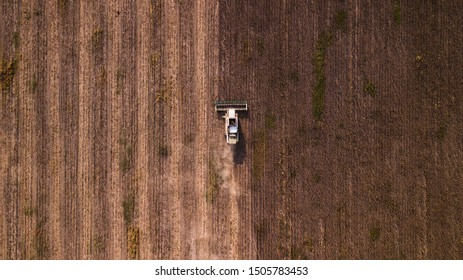 aerial view modern agricultural equipment , machinery, tractor  harvests wheat field. seasonal works. drone shot. picture with space for text. Farmland from above