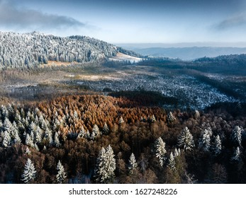 Aerial view of Mohos Peat Bog ,Nature reserve in Harghita county, Transylvania,Romania. Winter nature background with frozen trees and blue sky.