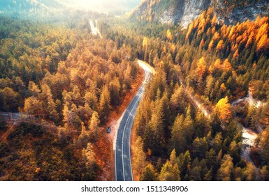 Aerial view of the mountain road in beautiful autumn forest at sunset. Top view of asphalt roadway, trees with red and orange foliage in fall. Colorful landscape with highway in mountains. Travel