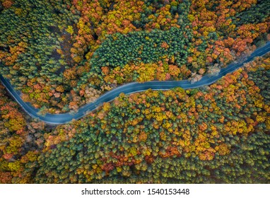 Aerial view of a mountain road during colorful autumn