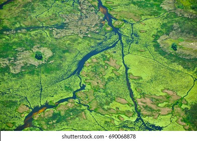 Aerial View of Okavango Delta River