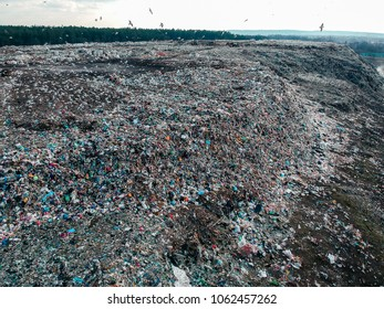Aerial view on city garbage dump with birds