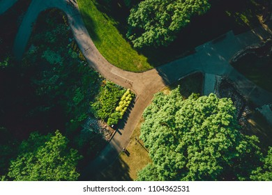 Aerial view on city park from drone point of view. Green trees and sidewalks