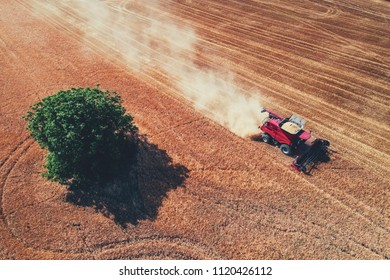 Aerial view on the combine working on the large wheat field.
