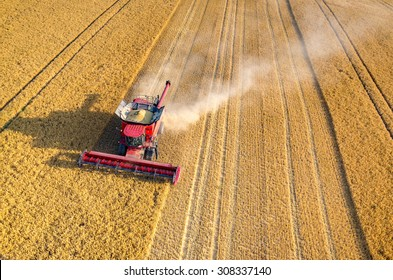 Aerial view on the combines and tractors working on the large wheat field