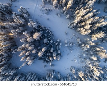 Aerial view on the mountain landscape in winter season