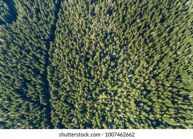 Aerial view on National park Durmitor. Montenegro.