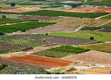 Aerial view on orange, tangerine and peach plantations and raw loamy ground, region of Valencia, Spain
