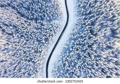 Aerial view on the road and forest at the winter time. Natural winter landscape from air. Forest under snow a the winter time. Landscape from drone