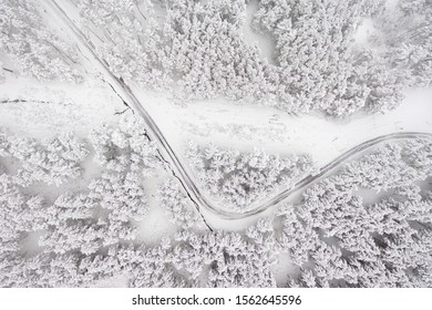 Aerial view on the road and forest at the winter time. Snowy forest, natural winter landscape .