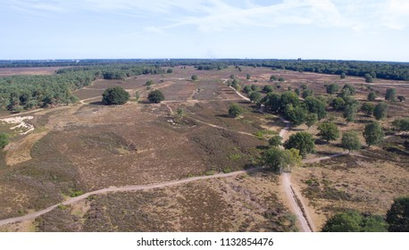 Aerial view on the west heath in Hilversum, Netherlands