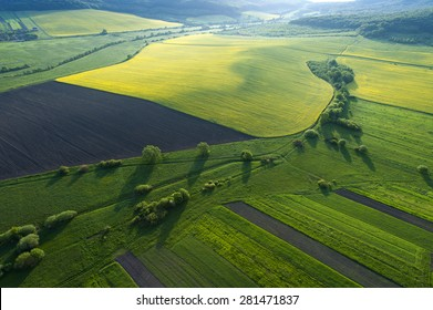 Aerial view on yellow fields