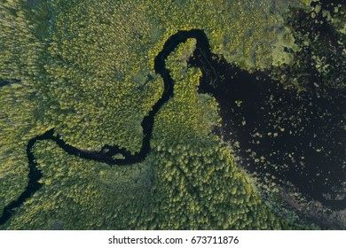 Aerial view of the Oswego River in the New Jersey Pine Barrens