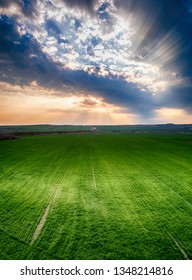 Aerial view over the agricultural fields at sunset. - Image