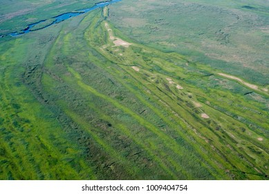 Aerial View over Danube Delta Marshland, Water, Reed, Vegetation