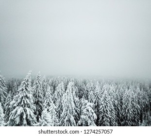 Aerial view over foggy woods in Kuopio, Finland