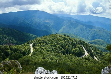 Aerial view over mountains covered in forests and a winding road