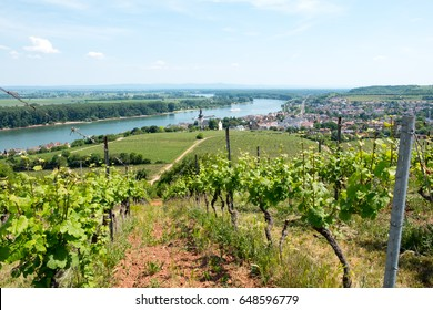 Aerial view over Nierstein and Oppenheim, Rheinhessen, Rhineland-Palatinate, Germany
