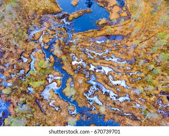 Aerial view over a swamp in autumn colors in Finnish Lapland