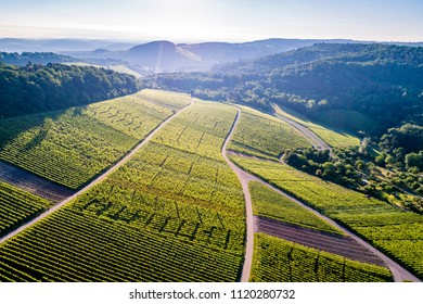 aerial view over vineyard in valley Remstal in Germany