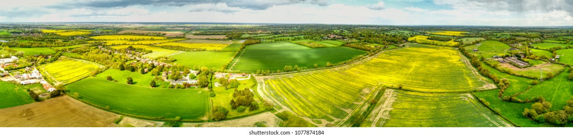 Aerial view overlooking Danbury country park - Near Chelmsford, Essex