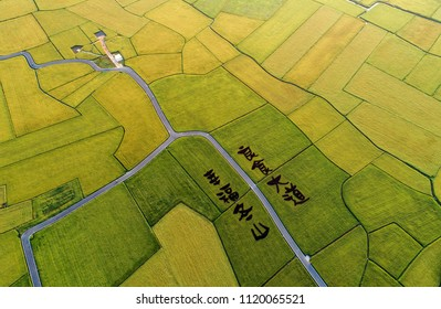 """Aerial view of the Paddy Art on rice fields at Brown Boulevard, DonShan, YiLan, Taiwan. The words on the ground means """"Happyness in DonShan, Greatfood Boulevard""""."""
