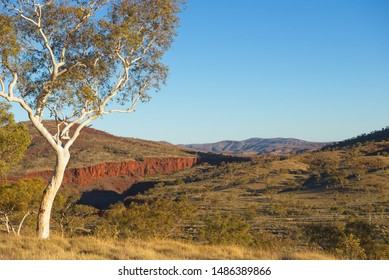 Aerial view of panorama in Pilbara, Western Australia, with green outback landscape, white gum trees, mountains, sunny blue sky as background.