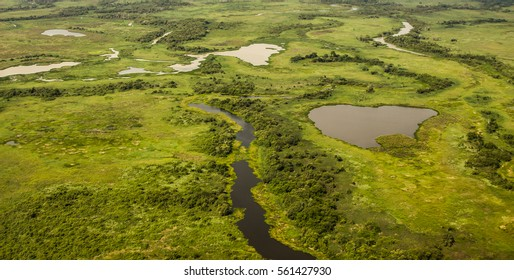 Aerial view of Pantanal wetlands, Pantanal, Brazil