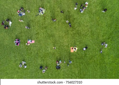 Aerial view of the people are resting on the lawn in the park