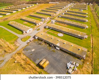 Aerial view to pig farm in green fields. Agriculture in Czech Republic and European Union.