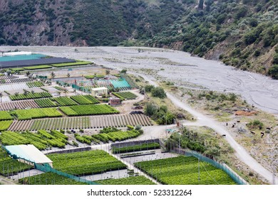 Aerial view plantations near gravel river Torrento Mazzarra at Sicilian Island