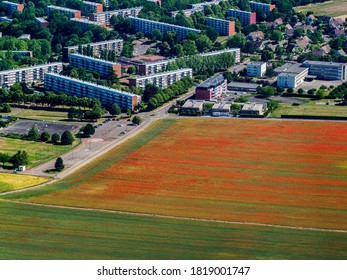 aerial view of poppy fields