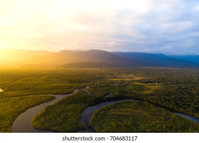Aerial View of a Rainforest in Brazil