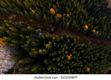 Aerial view of the Recreation Mountain Pysany kamin in Carpathian mountains. autumn. Pine forest, houses on the peaks, yellow fields and trees. Mountain meadow. sunset, Ukraine